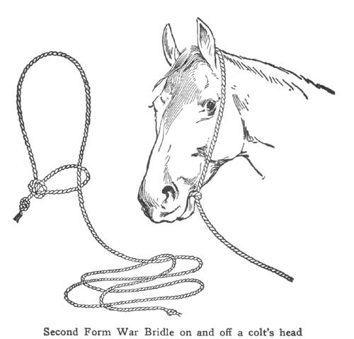 horseman tips